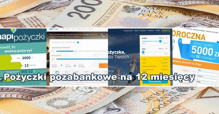 pożyczki pozabankowe na 12 miesięcy